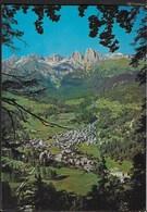 VENETO - CAVIOLA (BL) - PANORAMA - VIAGGIATA DA CAVIOLA 1979 - Italia
