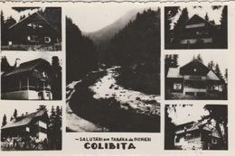 19 / 8 / 214. - COLIBITA. -  CPSM. MULTI  VUES - Rumania