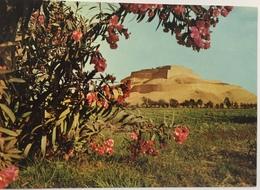 (651) Peru - Paramonga - The Ruins - 114 Miles North Of Lima. - Pérou