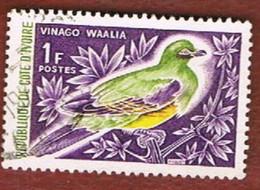 COSTA D'AVORIO (IVORY COAST) - SG 261.263 -   1966  BIRDS       -  USED ° - Costa D'Avorio (1960-...)