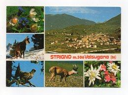 Strigno (Trento) - Cartolina Multipanoramica - Non Viaggiata - (FDC16478) - Trento