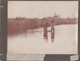 FLORIDA ALLIGATOR ON CUPBOARD  ANIMAUX ANIMALS ANIMALES TIERE  21*16CM Fonds Victor FORBIN 1864-1947 - Ancianas (antes De 1900)