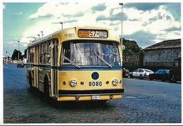 STIB MIVB  PHOTO AUTOBUS  LIGNE 57  VILVORDE  MARLY DE.TROOZ  NORD - Transportation