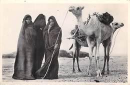 Afrique- MAURITANIE  (Mauritania) Femmes Maures à La Corvée De Bois (- Editions Collection G-Labitte N°18)*PRIX FIXE - Mauritanie