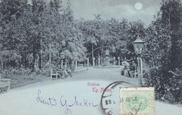 CPA - Roumanie - Târgu-Neamt - Gradina TG. Niamt (Jardin/Garden) - 1900 - Romania
