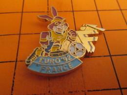 713h Pin's Pins / Beau Et Rare : Thème SPORTS / FOOTBALL EURO SUEDE 92 LIEVRE FRANCE Gros Flop !! - Football