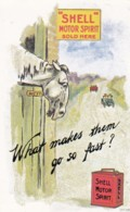 AO18 Advertising - Reproduction Poster - Shell, Horse Wondering Why Cars Go So Fast - Advertising