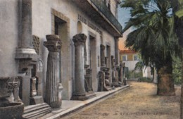 AN33 Philippeville, Le Musee - Skikda (Philippeville)