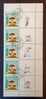 RUSSIA 1964 - 3038- Fungi (5 Stamps With Coupon) - Blocchi & Fogli