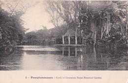 CPA - Maurice - Pamplemousses - Kiosk Of Gouramis - Royal Botanical Garden  - N° 2 - Mauricio