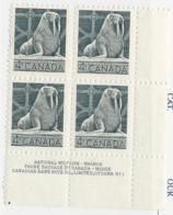23282) Canada 1954 Walrus Plate Block Mint No Hinge ** - 1952-.... Reign Of Elizabeth II