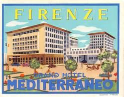 """08482 """"GRAND HOTEL MEDITERRANEO - FIRENZE"""" ETICH. ORIG. - Adesivi Di Alberghi"""