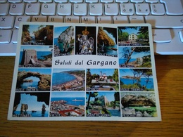 147665 CARTOLINA SALUTI DAL GARGANO - Foggia