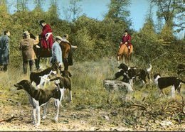 CHASSE A COURRE(VENERIE) SILLE LE GUILLAUME - Chasse