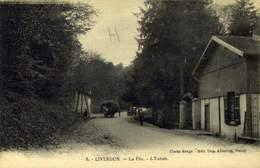 54 LIVERDUN LA FLIE L'ENTREE / A 532 - Liverdun