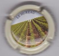 PASSY-GRIGNY LIEUX-DITS N°13b 3/12 - Champagne