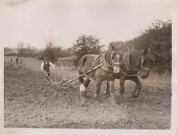 COAL FIELD IN BUCKINGHAMSHIRE? MINING INDUSTRY BUCKINGHAM GREAT HORWOOD PLOUGHMAN  20*15CM Fonds Victor FORBIN 1864-1947 - Profesiones