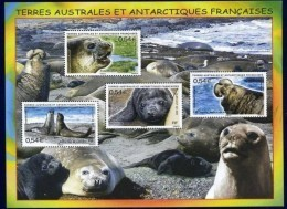 "TAAF Bloc YT 19 BF "" L'éléphant De Mer "" 2008 Neuf** - Blocs-feuillets"