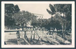 Algérie BONE Ecole D'Alzon Le Parc De La Récréation - Autres Villes