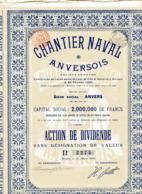 CHANTIER NAVAL ANVERSOIS; Action De Dividende (1905) - Navigation
