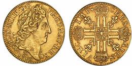Piece En Or De 1710 Poid Environ 6 Grammes - 987-1789 Monnaies Royales