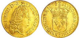 Louis D'or  - 1691 Environ 7 Grammes - 987-1789 Monnaies Royales