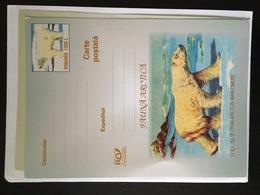 Carte Postale Roumanie Ours Blanc Thalarctos Maritimus - Arctic Wildlife