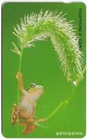 South Korea - Korea Telecom (Chip) - Tree Frog (Letter J On Front) - 1997, 5,000₩, Used - Korea (Süd)