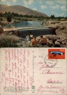 GAN HASHELOSHA,ISRAEL POSTCARD - Israel