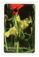 UKRAINE - Blooming Ukraine - Gladiolus - Flower - Phonecard Telecard Chip Card 7000 Units - Flores