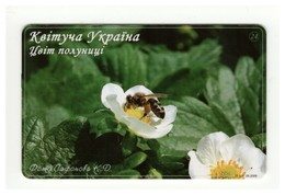 UKRAINE - Blooming Ukraine - Strawberry - Flower - Fauna Bug Bee - Phonecard Telecard Chip Card 7000 Units - Bienen