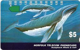 Norfolk Isl. - Telstra/Norfolk. Tel (Anritsu) - Humpback Whales (SCC Issue), 1995, 5$, 4.000ex, Used - Norfolk Eiland