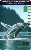 Norfolk Isl. - Telstra/Norfolk. Tel (Anritsu) - Humpback Whale Breaching (SCC Issue), 1995, 10$, 4.000ex, Used - Norfolkinsel