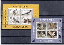 Israel - Oiseaux