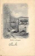 Ways NA3: Le Bosquet 1903 - Genappe