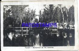 117366 ARGENTINA TANDIL BUENOS AIRES MANANTIAL DE LOS AMORES POSTAL POSTCARD - Argentinien