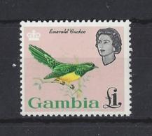 "GAMBIA..QUEEN ELIZABETH II.(1952-NOW).."" BIRDS "".....£1....SG205...MH.. - Cuckoos & Turacos"