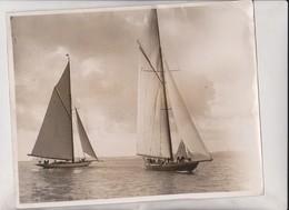 TORBAY REGATTA WHITE HEATHER AND SHAMROCK   25*20CM Fonds Victor FORBIN 1864-1947 - Barcos