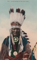 Native American Indian 'Little Soldier' Of Ponca Tribe, Headress, C1900s/10s Vintage Postcard - Indios De América Del Norte