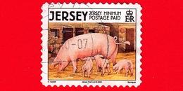 JERSEY - Usato - 2008 - Animali Della Fattoria - Maiali - Domestic Pig (Sus Scrofa Domestica) - Minimum - Jersey