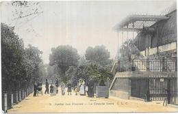 PARIS: JARDIN DES PLANTES - LA GRANDE SERRE - N°3 C.L.C - France