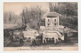 65 Bartrès Près Lourdes Bel Attelage De Vaches Vers Monument Ou Passait Ste Bernadette Auto Ancienne Marque ? - Lourdes