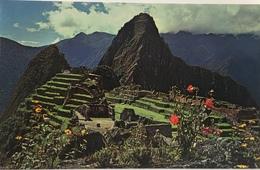 (654) Peru - Machupicchu - View Of Citadel And Huaynapicchu In The Rear - Pérou