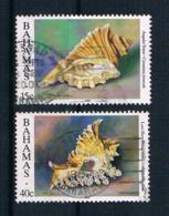 Bahamas 1996 Muscheln Mi.Nr. 891/95 Gestempelt - Bahamas (1973-...)