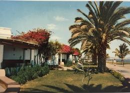 (666) Peru - Hotel Paracas Pisco - Pérou