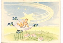 Geboortekaartje Carte De Naissance - Alphonsine Van Lierop - St Niklaas 1954 - Naissance & Baptême