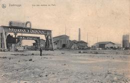 Vue Des Ateliers Du Port - NELS - Zeebrugge - Zeebrugge