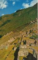 (668) Peru - Machupicchu - Inca Terraces For Agriculture - Pérou