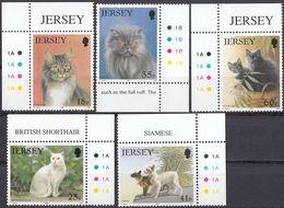 JERSEY - 1994 - Serie Completa Nuova MNH, Di 5 Valori, Yvert 639/643, Raffiguranti Gatti Di Razza E Comuni. - Jersey