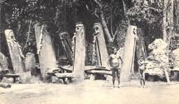 CPA PANORAMIQUE NOUVELLES HEBRIDES - Vanuatu